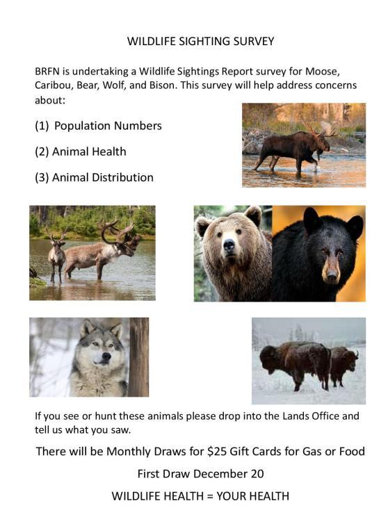 Wildlife Sighting Survey-page-001