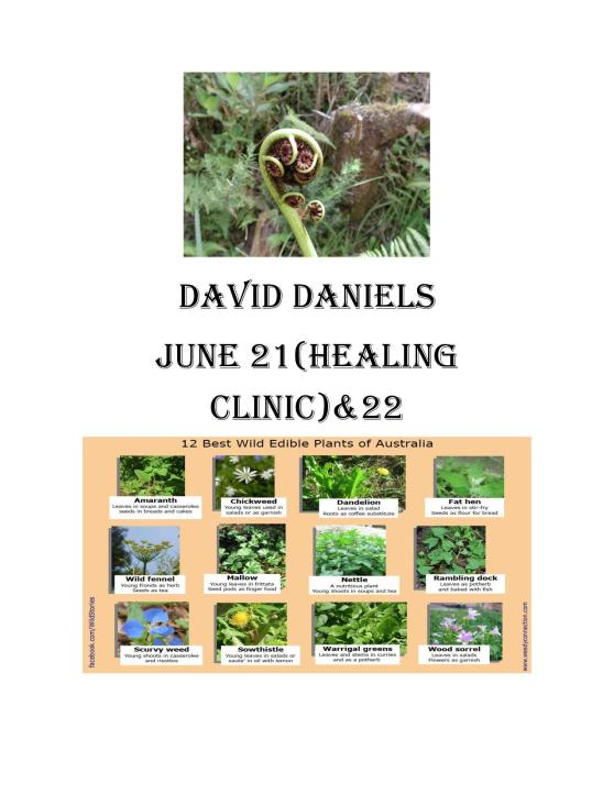 david danial-page-001