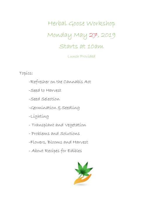 Herbal Goose Workshop-page-001