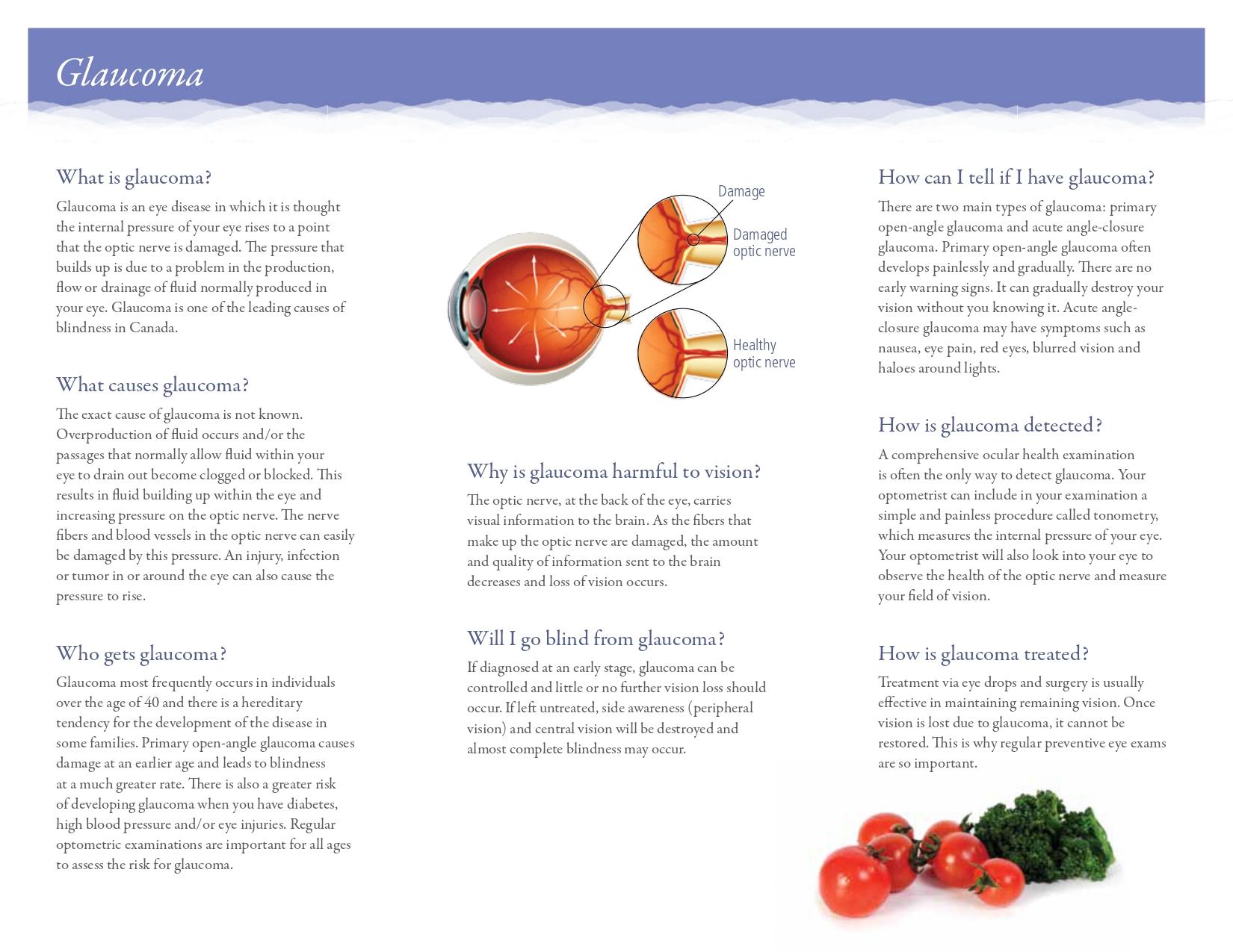 Glaucoma-EN-LR_page-0002